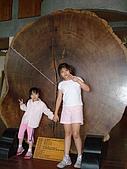 宜蘭之旅太平山200707:20070701 011