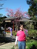 2007台中新社薰衣草森林:DSC00570
