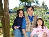 2007台中新社薰衣草森林:DSC00579