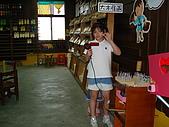宜蘭之旅荖農溪200707:DSC00917