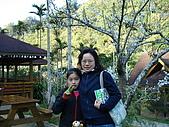 2007台中新社薰衣草森林:DSC00540