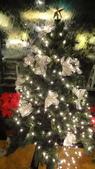 聖誕快樂:DSC06590.JPG