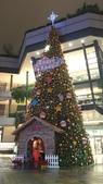 聖誕快樂:DSC_0099.JPG