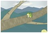 蛙蛙明信片:1521649844077.jpg