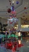 聖誕快樂:DSC06006.JPG