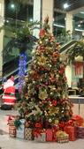 聖誕快樂:DSC06526.JPG
