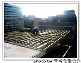 新竹 南方松採光罩、綠色霧光板,遮蔽大日曬:IMG_1182.jpg