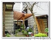 龍潭 戶外南方松遮雨棚 格網圍籬 木造斜屋頂 自然原木色:DSC00170.jpg