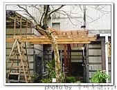 龍潭 戶外南方松遮雨棚 格網圍籬 木造斜屋頂 自然原木色:DSC00196.jpg