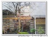 龍潭 戶外南方松遮雨棚 格網圍籬 木造斜屋頂 自然原木色:DSC00199.jpg