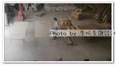 【南方松防腐木格網】【進口南方松、台灣製造】木圍籬、木欄杆、木網片、斜紋、菱形,有框無框特,接受訂製:rps20120702_162801.jpg