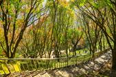 石門水庫:IMG_4988.jpg