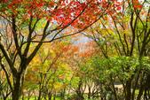 石門水庫:IMG_4975.jpg