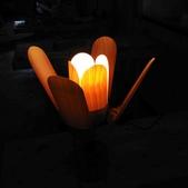 花朵夜燈:02.jpg