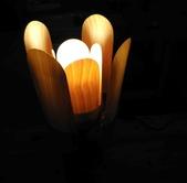 花朵夜燈:01.jpg
