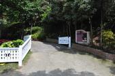 20100314台中縣太平市酒桶山、仙女瀑布、蝙蝠洞之旅:DSC_0018.JPG