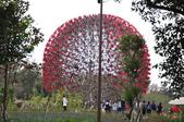 20190228臺中世界花卉博覽會(森林園區):DSC_8665.JPG