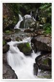 20120531-0601馬武督探索森林&拉拉山二日遊:DSC_2036.jpg