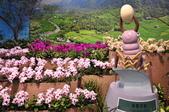 20190404臺中世界花卉博覽會(外埔園區):DSC_9059.JPG