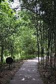 20120723苗栗縣天空之城&綠葉方舟之旅:DSC_2749.JPG