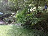 20080414苗栗縣綠葉方舟、東勢林場一日遊:20080414323.jpg