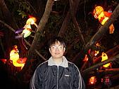 20050228豐原迪士尼花燈之旅:DSC05138.JPG