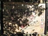 20091212新竹縣新埔鎮南園參觀:IMG_1000.JPG