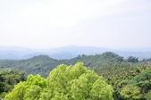 20100314台中縣太平市酒桶山、仙女瀑布、蝙蝠洞之旅:DSC_0021.JPG