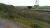 20140406台中市龍井區護岸路旁自行車道:IMAG1046.jpg