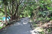 20120506苗栗縣卓蘭鎮大克山森林遊樂區之旅:DSC_0845.JPG