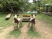 20080414苗栗縣綠葉方舟、東勢林場一日遊:20080414324.jpg