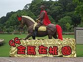 20100407桃園縣大溪鎮花海&後慈湖一日遊:IMG_0385.JPG