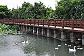 20100709台中縣大安鄉休閒農漁園區之旅:DSC_2733.JPG