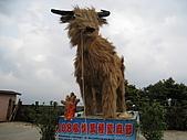 20090322苗栗縣大湖鄉薑麻園遊玩:IMG_0580.JPG