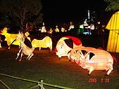 20050228豐原迪士尼花燈之旅:DSC05139.JPG