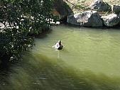 20091212新竹縣新埔鎮南園參觀:IMG_1003.JPG
