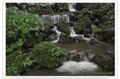 20120531-0601馬武督探索森林&拉拉山二日遊:DSC_2052.jpg