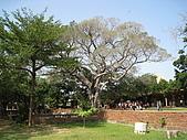 20091024-25二日遊Day2-2台南市孔廟:IMG_0978.JPG