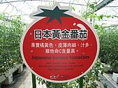 20091003新竹縣北埔鄉金勇&綠世界一日遊:IMG_0373.JPG