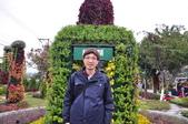 20181231臺中世界花卉博覽會(葫蘆墩公園):DSC_7901.JPG