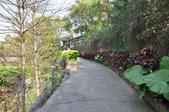 20100227台中縣潭子鄉風動石步道健行:DSC_0392.JPG