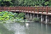 20100709台中縣大安鄉休閒農漁園區之旅:DSC_2734.JPG