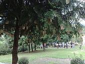 20080319新竹縣薰衣草、內灣車站一日遊:20080319110.jpg