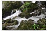 20120531-0601馬武督探索森林&拉拉山二日遊:DSC_2064.jpg