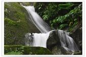 20120531-0601馬武督探索森林&拉拉山二日遊:DSC_2066.jpg