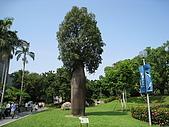 20081012台中市植物園參觀:IMG_0360.JPG