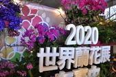 20191117台中市新社花海(2019臺中國際花毯節):DSC_1337.JPG
