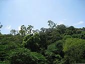 20090725新竹市高峰植物園參觀:IMG_1541.JPG