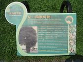 20081012台中市植物園參觀:IMG_0361.JPG