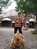 20091024-25二日遊Day1-1雲林古坑休息站:IMG_0835.JPG